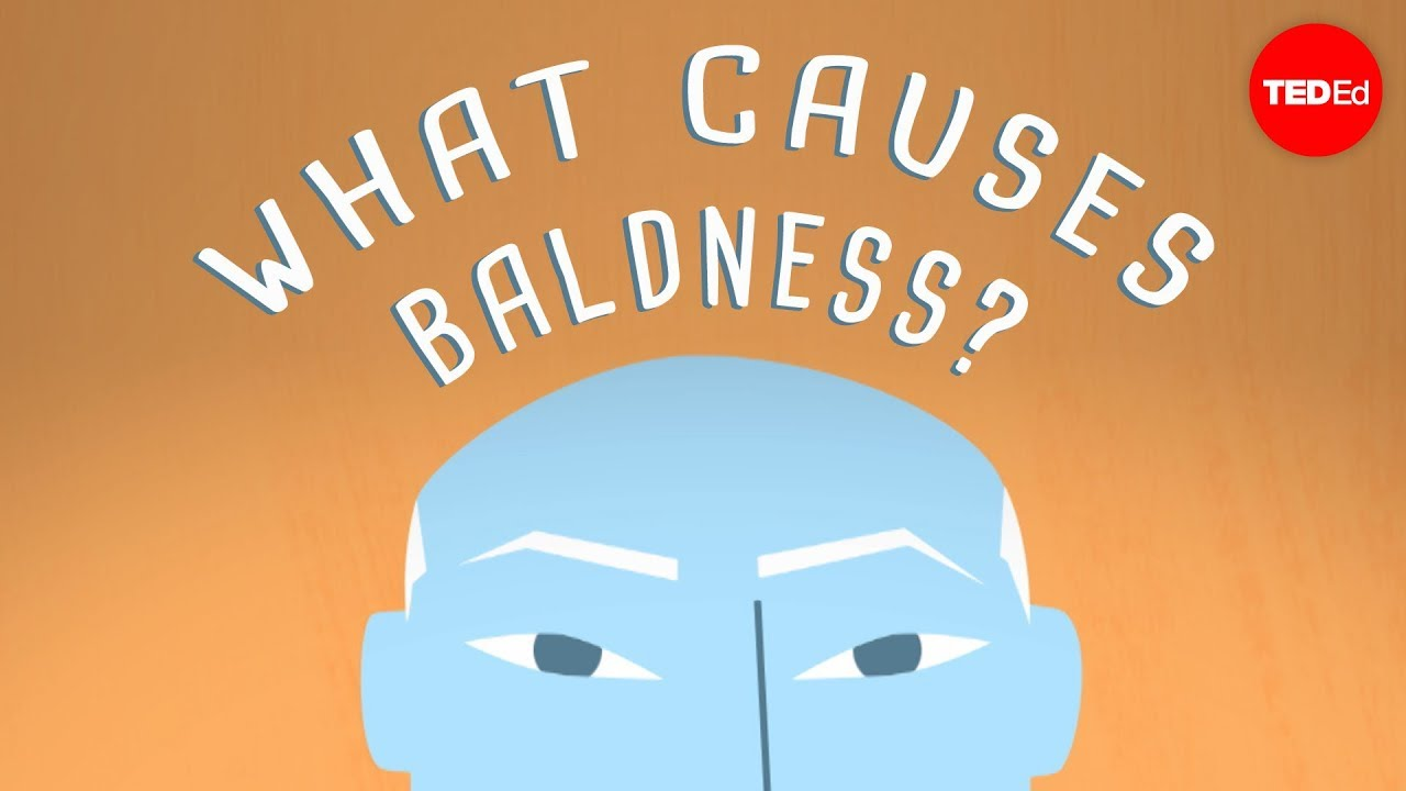 Why Do Some People Go Bald Sarthak Sinha