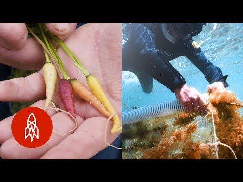 Five Farms on Earth (and the Ocean Floor)