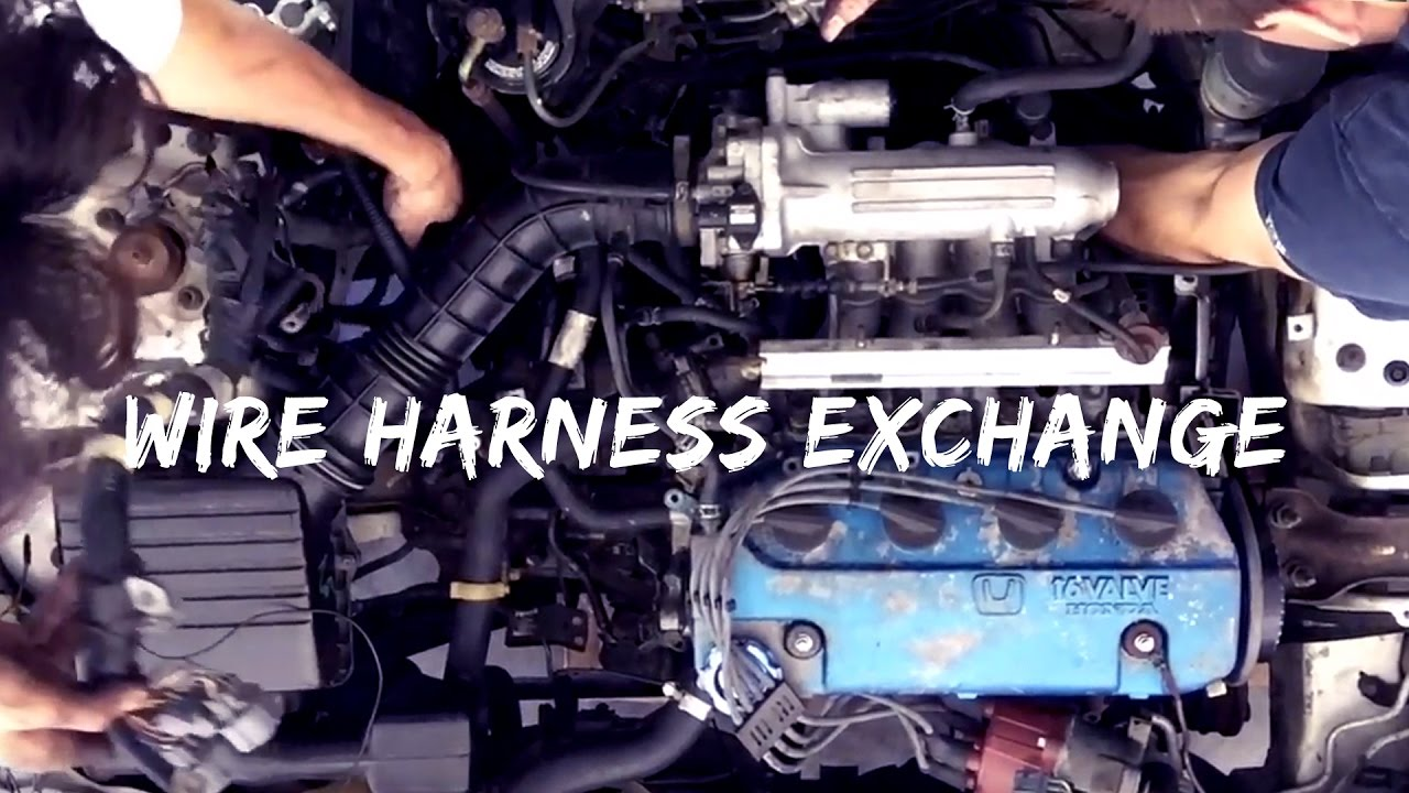 wire harness exchange 1992 honda civic eg ep 13 [ 1280 x 720 Pixel ]