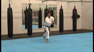 Grade 10 - White Belt Pattern - Saju Jirugi (L)