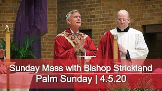Gambar cover Sunday Mass with Bishop Strickland | Palm Sunday | 4.5.20 HD