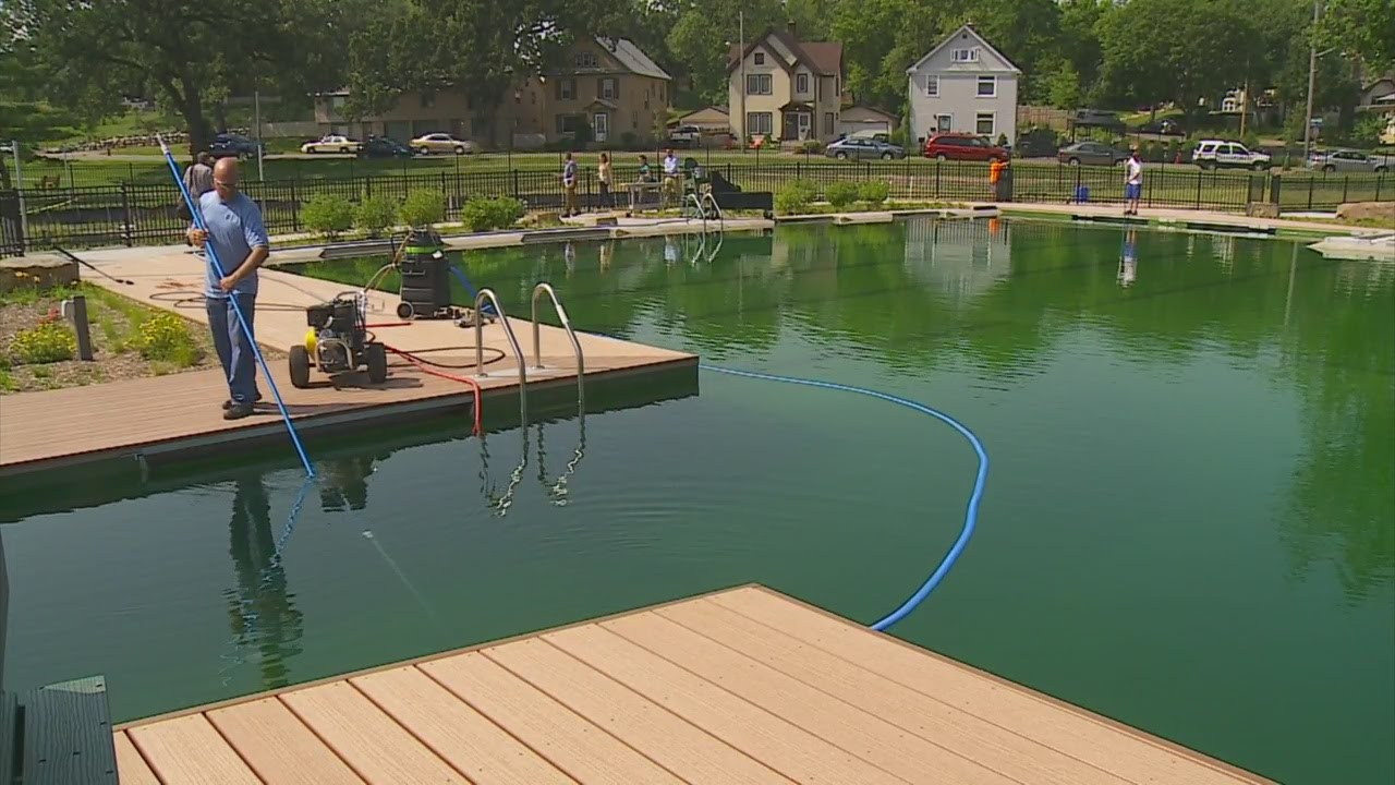 How To Remove Algae From Pool Naturally