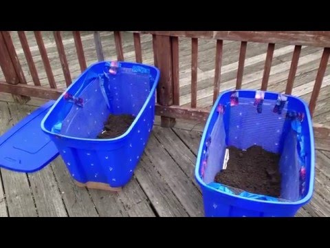 How to Build Your Own Compost Bin