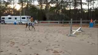 Susie small pony jumping