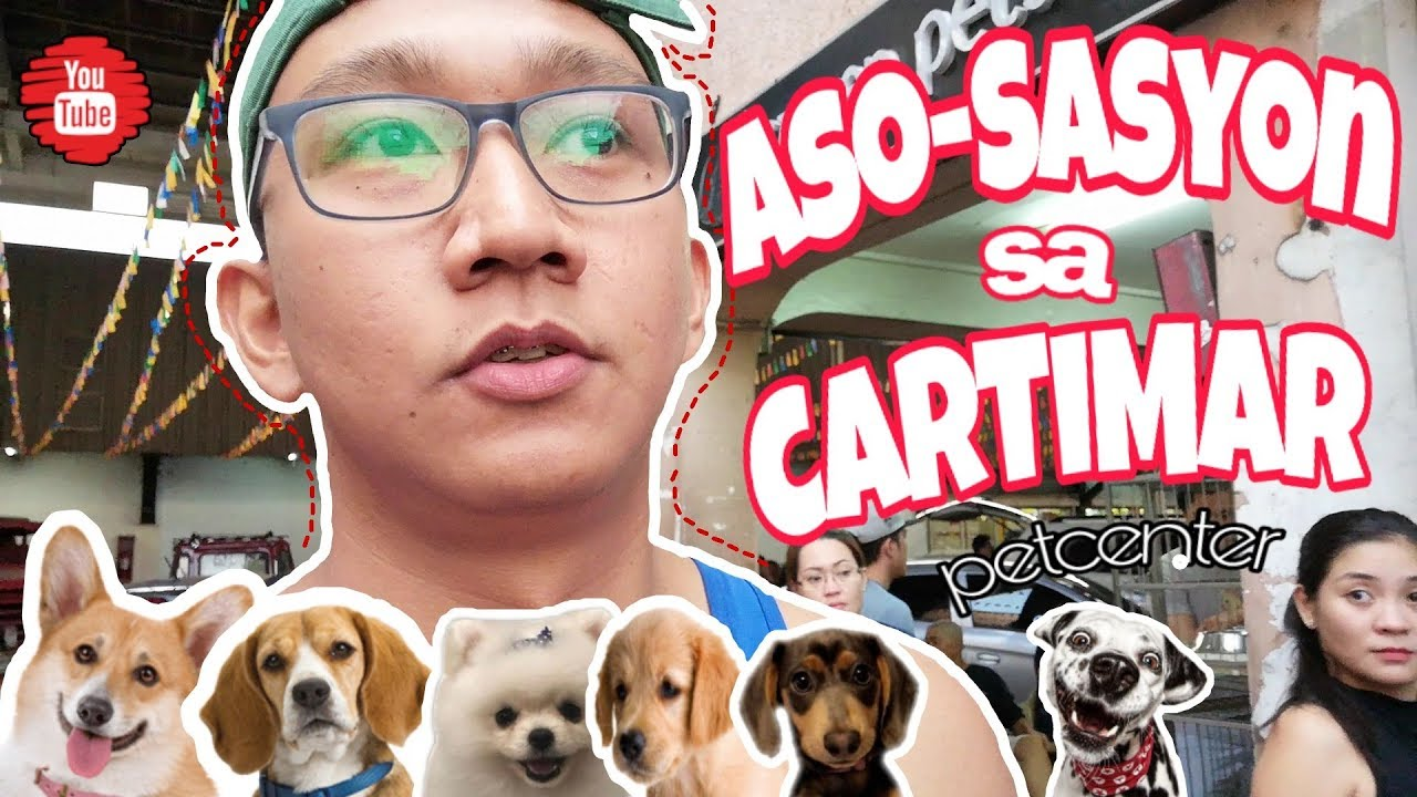 Best Petshop In The Philippines ?? | Cartimar Pet Center ? | Pet Lover ❤