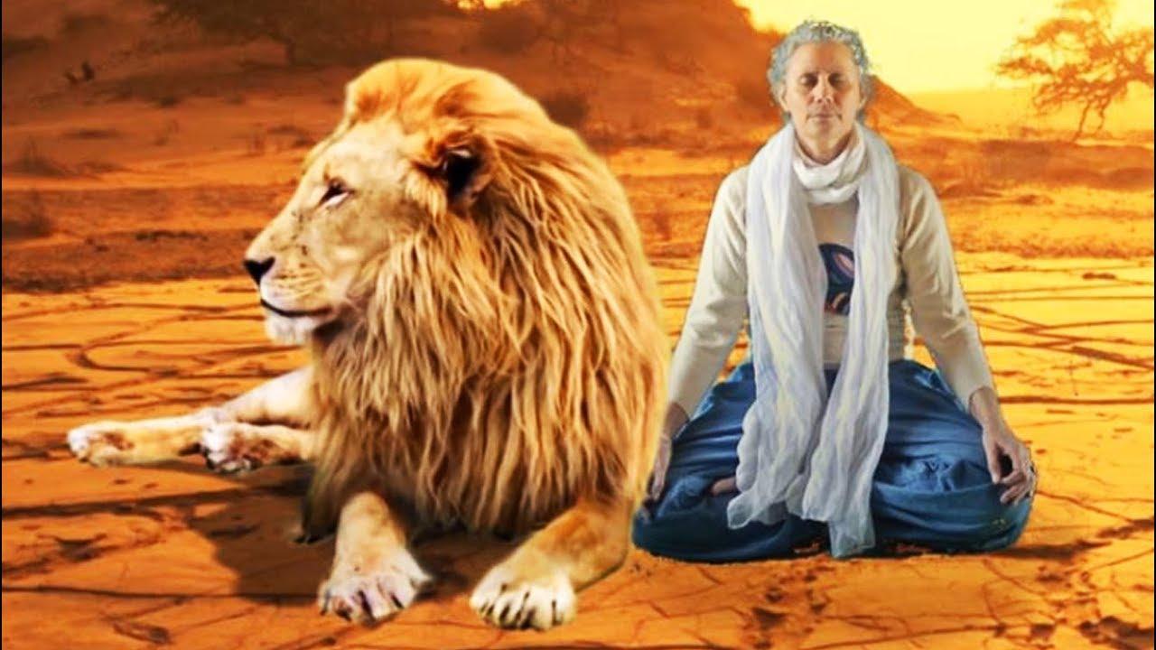 Humour Zen Film Court Metrage Drole L Apprentie Bouddha Elephants Lion Musique F Amathy Youtube