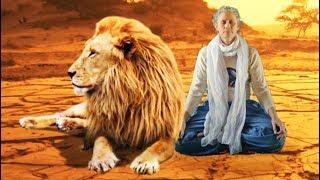 """Humour zen - film/court métrage drôle """"L'apprentie Bouddha"""" - éléphants-lion (musique F. Amathy)"""