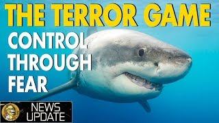 Australian Encryption Bill - Terrorism, Sharks, & Decentralization