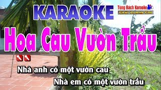 Hoa Cau Vườn Trầu - Karaoke Nhạc Sống Tùng Bách