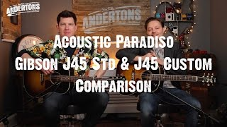 Acoustic Paradiso - Gibson J45 Standard & J45 Custom Comparison