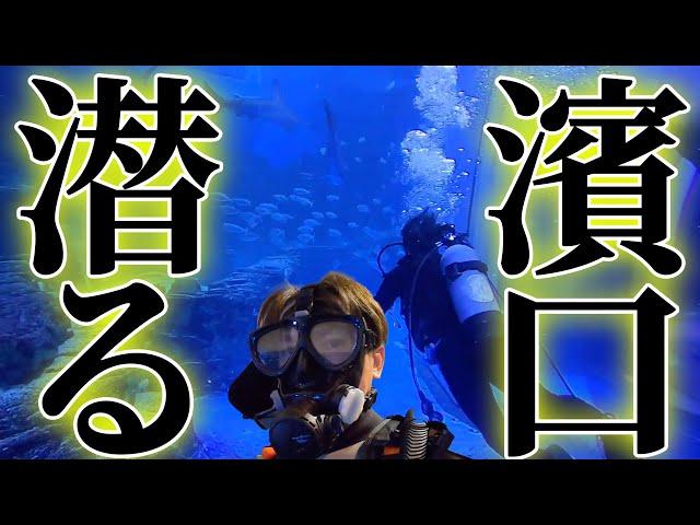 濱口、潜る!数々の場所を潜ってきた濱口が八景島シーパラダイスに潜ってみた!