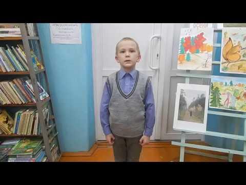 Изображение предпросмотра прочтения – ВиталийСергеев читает произведение «Осень наступила...» А.Н.Плещеева