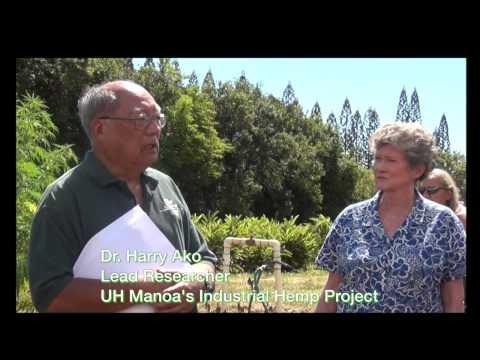 Hemp Project - University of Hawaii with Representative Thielen