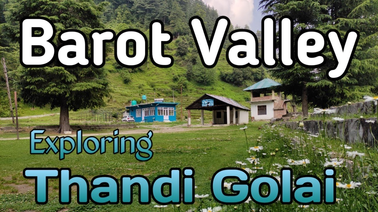 Barot valley    Thandi Golai    Best place in Barot valley    Himachal Pradesh    Nature videography