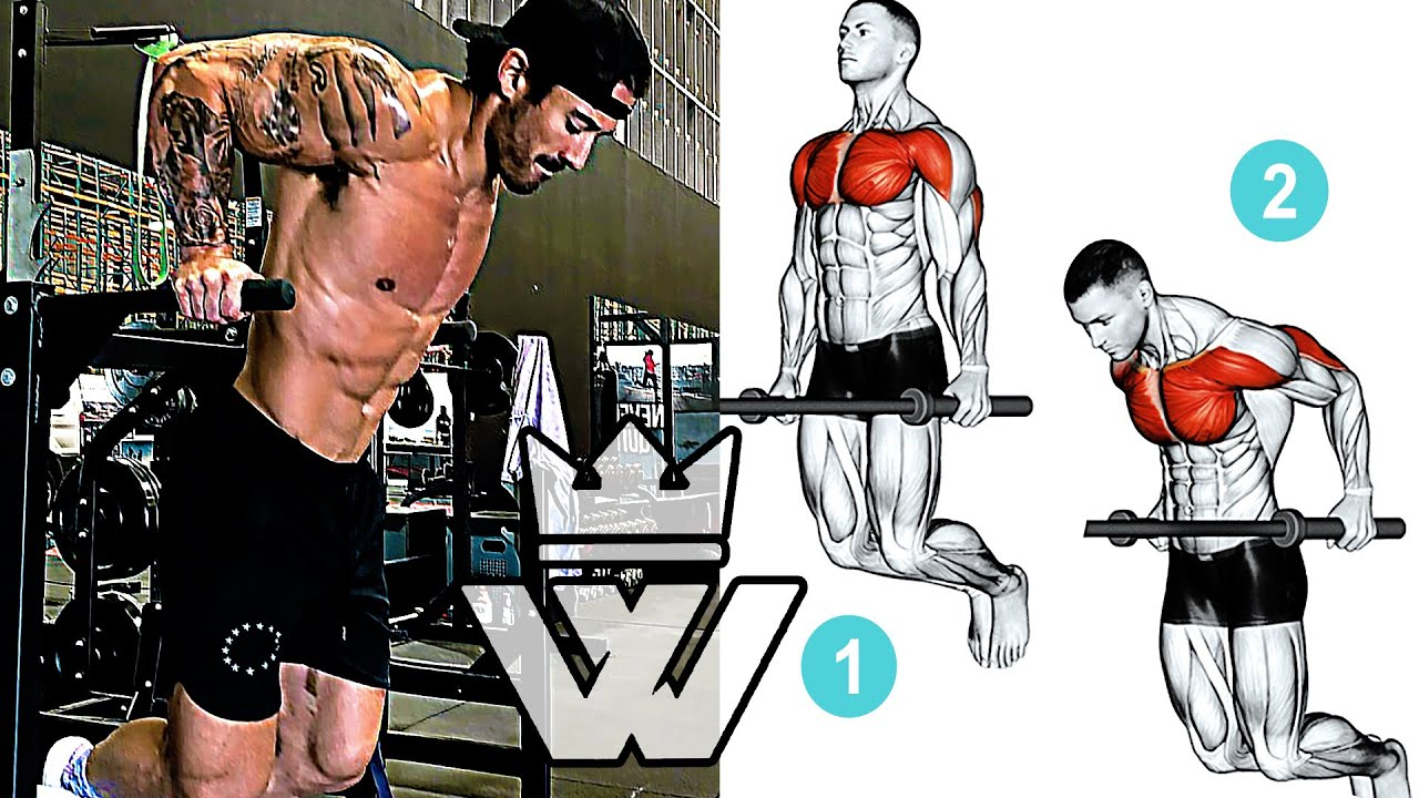 13 Exercises for Building Muscle / Muscle Growth