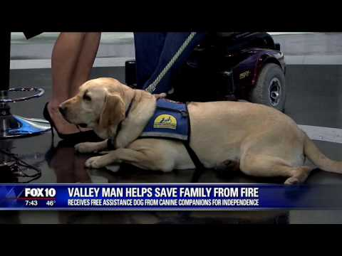 Valley man receives free assistance dog