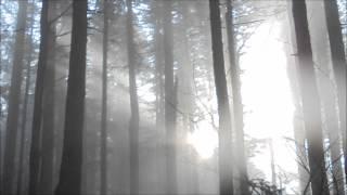 Mist - Album Mix