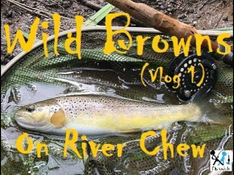 Fly Fishing The River Chew (Vlog 1)