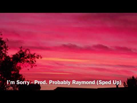 I'm Sorry Feat Shiloh (Prod. Probably Raymond) (Sped Up)