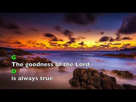 The Goodness Of The Lord (lyrics & chords) Travis Ryan