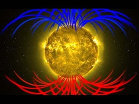A star whose magnetic field flipped