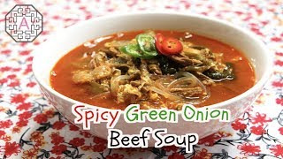 Spicy Green Onion and Beef Soup (파개장)