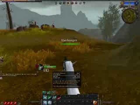 Warhammer Online Shadow Warrior And Warrior Priest Gameplay