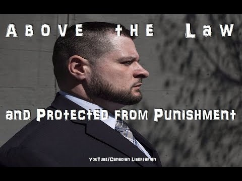 Above the Law and Protected from Punishment - The Public Sector