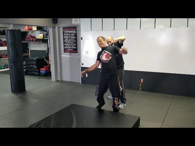 Double Taser Ride Krav Maga Fight Through The pain Workshop