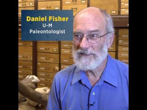 Cerutti Mastodon Discovery: Human Activity?
