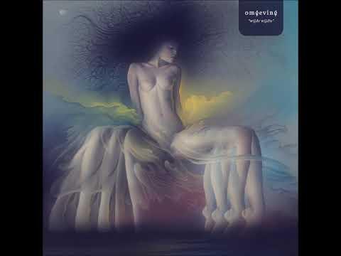 Omgeving - Wijde Wijdte (2018) Mp3