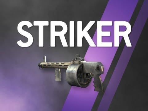 Striker - Modern Warfare 2 Multiplayer Weapon Guide