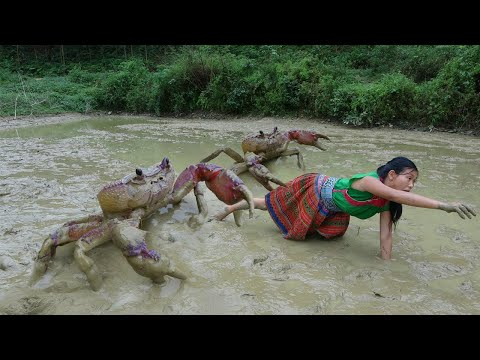 Survival skills – Catching crab at the mud pond and cooking crab recipe – Eating delicious
