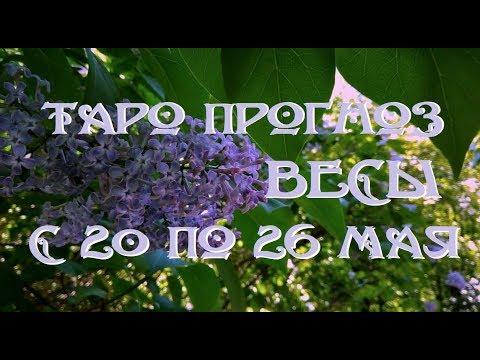 Весы. Таро прогноз на неделю с 20 по 26 мая 2019 г. Онлайн гадание.