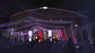 Christmas Tree Lighting Garden Brunch | 10th December