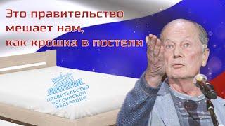 Михаил Задорнов - Это правительство мешает нам, как крошка в постели