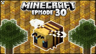 Minecraft Bee Nests Are RENEWABLE In 1.15.2! | Python Plays Minecraft Survival [Episode 30]