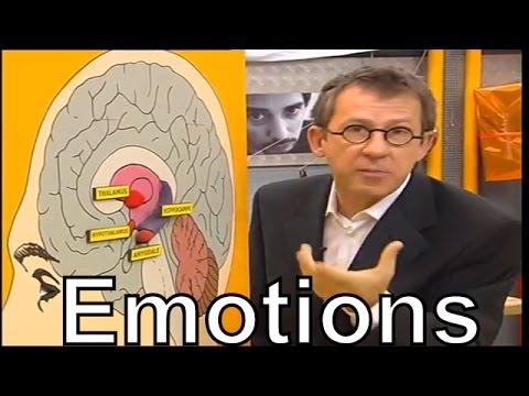 hqdefault - Nos émotions : Amies ou ennemies?