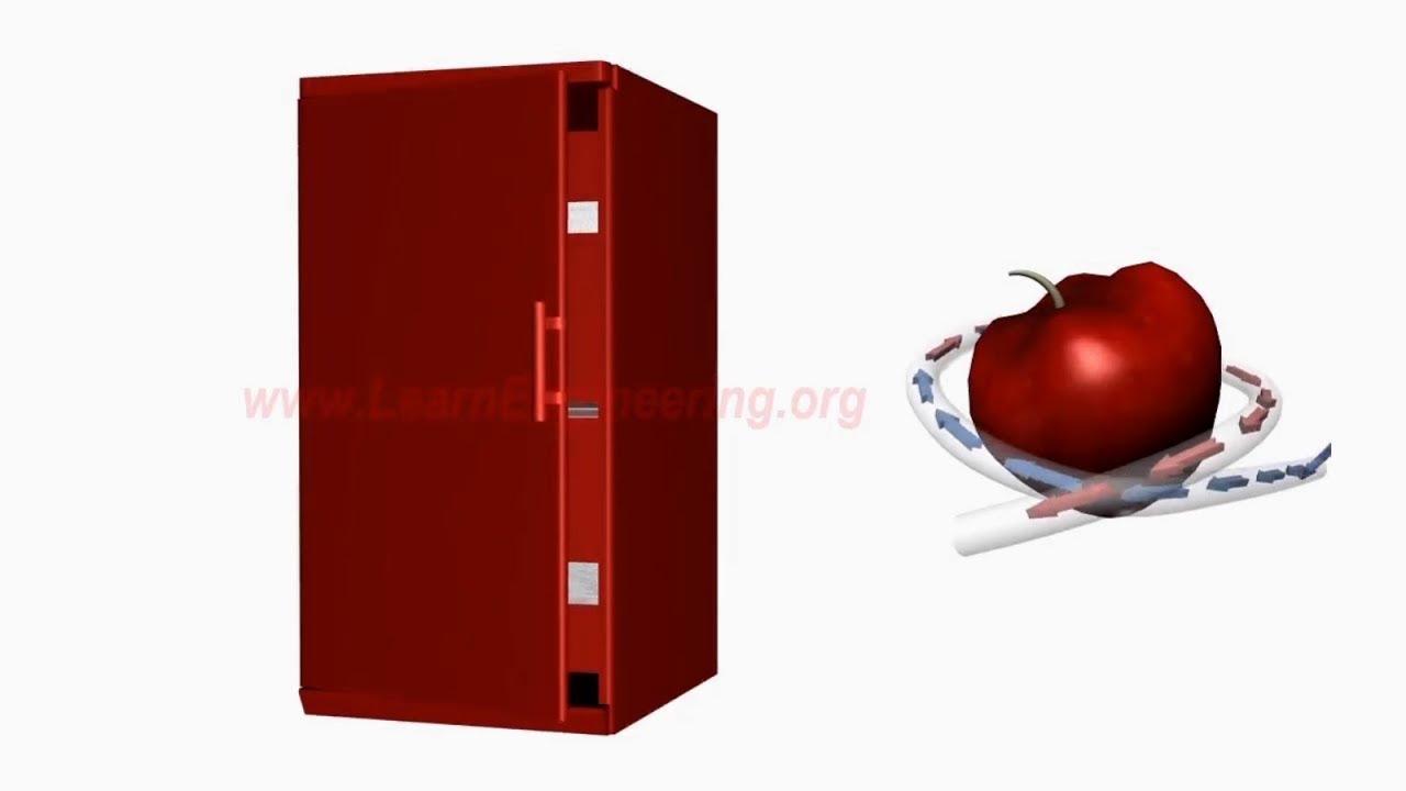 Refrigerator LG GA E409SERA: description, features and reviews