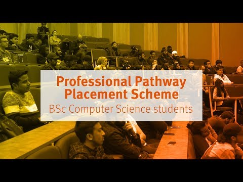 Professional Pathway Placement Scheme for BSc Computer Science Students