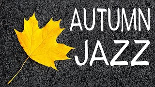 Autumn JAZZ Radio - Cafe JAZZ \u0026 Sweet Bossa Nova For Relax, Work and Study
