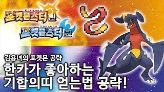 포켓몬스터 썬문 기합의띠 얻는법 김용녀 공략 (Pokemon Sun/Moon)