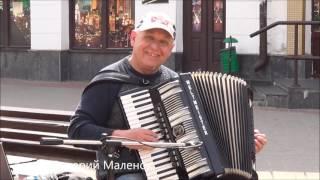Порвал улицу и заставил прохожих танцевать... Классный музыкант!!!