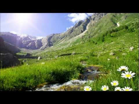 MUSIC TO CALM DOWN - Alpha Wave Healing for Stressed Minds mp3