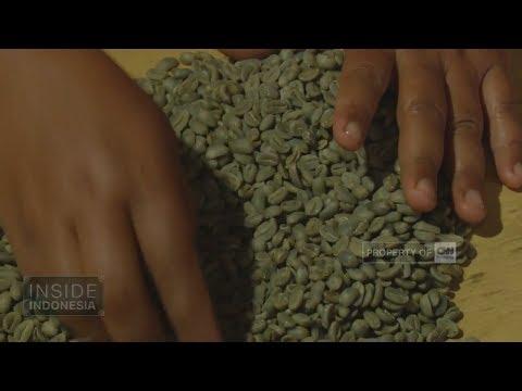 Pasar Baru Kopi Gayo 2 - Inside Indonesia