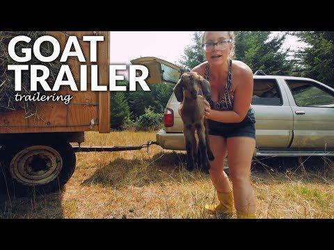 Goat Shelter Trailer - Portable shelter