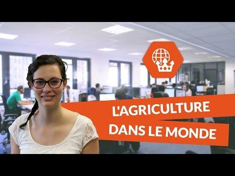 L'agriculture dans le monde - Histoire géographie - digiSchool