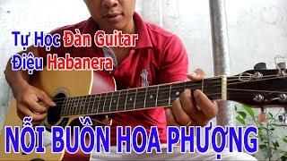 Tự Học Guitar: NỖI BUỒN HOA PHƯỢNG Bolero và Habanera Đơn Giản Nhất Có Thể