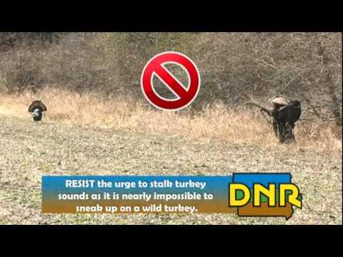 Iowa DNR Spring Turkey Hunting