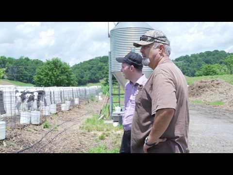 Radio Bristol Farm Report - King Dairy